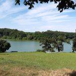 Майорський ставок біля Качанівського палацу